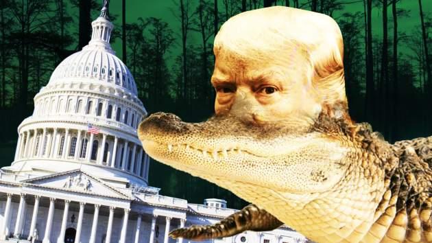171029-swamp-trump-tease_i0ctx